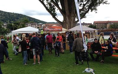 Lebendiger Neckar 21.06.15